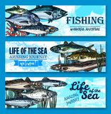 Vector fish banners for sea fishing adventure. Fishes banners for fishing club or fisherman adventure journey to sea life. Vector ocean trout, salmon or mackerel Stock Photography