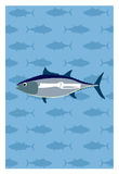 Vector of fish. On blue background. Eps10 Stock Photo