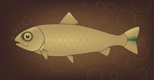 Vector fish with bubbles Royalty Free Stock Photography