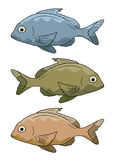 Vector fish Royalty Free Stock Image
