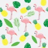 Vector Flamingo Bird Stock Images