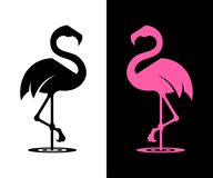 Vector flamingo silhouette royalty free stock photos