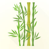 Vector flat bamboo plants illustration Stock Photos