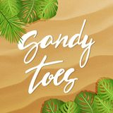 Vector sandy toes lettering. Vector flat banner with sand texture background. Hand made lettering sandy toes . Top view of tropical leaves. Summer travel and vector illustration