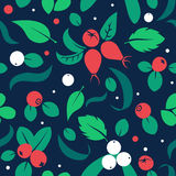 Vector flat berries, seamless creative pattern. Stock Image