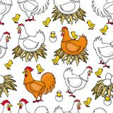 Vector flat chicken in nest chick seamless pattern Stock Image