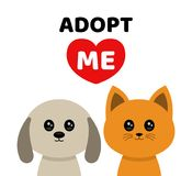 Adopt me. Dont buy. Dog Cat Pet adoption. Vector flat cartoon illustration icon design.Adopt me. Dont buy. Dog Cat Pet adoption. Puppy pooch kitty cat looking Stock Images