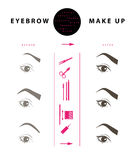 Vector flat eyebrow make up illustration. Stock Image
