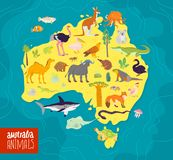 Vector flat illustration of Australia continent, animals and plants: parrot, camel, kangaroo, crocodile, ostrich, koala, turtle an. D palm tree, cactus etc. Good vector illustration