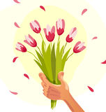 Vector flat illustration of human hand holding bouquet of spring flowers. Isolated on white background. Bouquet of pink tulips. Cartoon style. Good for spring royalty free illustration