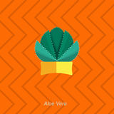 Vector flat illustration of indoor homeplant aloe vera in pot Royalty Free Stock Photo