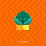 Vector flat illustration of indoor homeplant aloe vera in pot Royalty Free Stock Photo