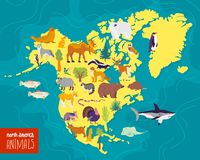 Vector flat illustration of North America continent, animals & plants: seal, bear, moose, owl, deer, raccoon, turkey. Vector flat illustration of North America stock illustration