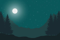 Vector flat illustration of a panoramic night mountain landscape Stock Images