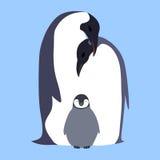 Vector flat illustration Penguin family. Royalty Free Stock Photography