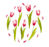 Vector flat illustration of spring flowers isolated Stock Photos