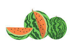 Vector flat illustration of watermelon. Stock Images