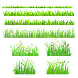 Vector flat isolated seamless grass lines with flower, butterfly Royalty Free Stock Photo