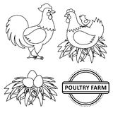 Vector flat poutry, farm chicken set. Vector chicken set. Monochrome contour rooster, cock, hen chicken, eggs in hay nest, yellow small chick, poultry farm logo Royalty Free Stock Photography