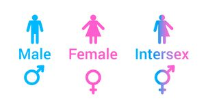 Vector flat set of gender male, female and intersex icons. Vector flat set of gender male, female and intersex icons in pink and blue colors isolated on white stock illustration