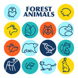 Vector flat simple minimalistic forest animal logo. Animal icon, animal sign, symbol  on white background. Nature park, national zoo, pet shop logo, animal Royalty Free Stock Photos
