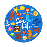 Vector flat style circle composition with sea life icons. Icon for web. Isolated on white background Stock Photos