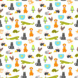 Vector flat style colorful seamless pattern with home pet. Illustration of cat, dog, parrot and others. White background Stock Photo