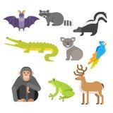 Vector flat style set of animals. Crocodile, raccoon, monkey. Stock Photography