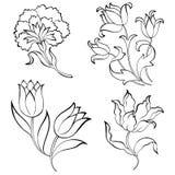 Vector floral Fotos de archivo libres de regalías