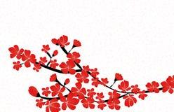 Vector floral abstracto de Sakura Flower Japanese Natural Background Imagenes de archivo