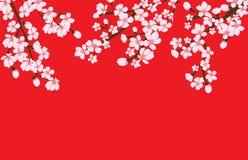 Vector floral abstracto de Sakura Flower Japanese Natural Background Fotos de archivo libres de regalías