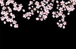 Vector floral abstracto de Sakura Flower Japanese Natural Background Fotografía de archivo
