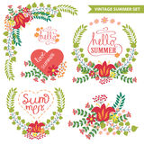 Vector  floral arrangement.Doodl Vintage summer set Stock Photos