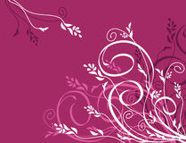 Free Vector Floral Background Royalty Free Stock Image - 1937936