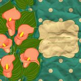 Vector floral background with calla Royalty Free Stock Photo