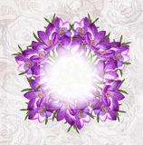 Vector floral background. EPS 10 Royalty Free Stock Image