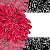 Vector floral background with hand drawn red peonies flowers Royalty Free Stock Images