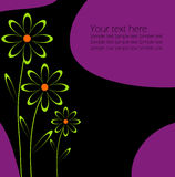 Vector floral backgrounds Royalty Free Stock Images