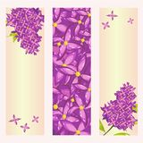 Set of floral banner templates with lilac flower. Vector floral banner templates with lilac flower and place for text. Perfect for invitation, greeting cards Royalty Free Stock Images