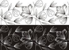 Vector floral border Stock Photo