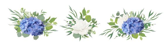 Vector floral bouquet design: blue hydrangea flower, garden peon. Y Rose, anemone poppy, ranunculus bud, white lilac, eucalyptus branches & greenery leaves Stock Illustration