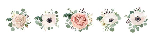 Vector floral bouquet design: garden pink peach lavender creamy. Powder pale Rose wax flower, anemone Eucalyptus branch greenery leaves berry. Wedding vector Royalty Free Illustration