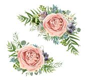 Vector floral bouquet design: garden pink peach lavender Rose wa. X flower, Eucalyptus branch, green fern palm leaves, succulent berry. Wedding vector invite Stock Image