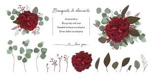 Vector floral bouquet design with: garden red burgundy Rose flow Royalty Free Stock Photo