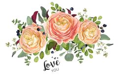 Vector floral card design: garden peach rose Ranunculus flowers royalty free illustration