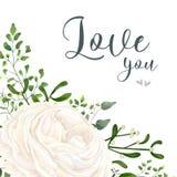 Vector floral card design: garden white, creamy Ranunculus flowe. R, green Eucalyptus, greenery fern mistletoe leaves & berry bouquet. Wedding vector invitation Royalty Free Stock Photography