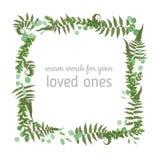 Vector floral card design. Green fern forest leaves herbs, eucalyptus, boxwood. Natural botanical Greeting wedding invite. Editable template.square Frame border stock illustration