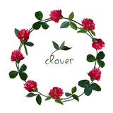 Vector floral card Royalty Free Stock Photos