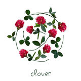 Vector floral card Stock Photography