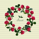 Vector floral card Royalty Free Stock Images